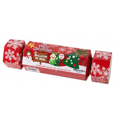 Ballotin de Noel