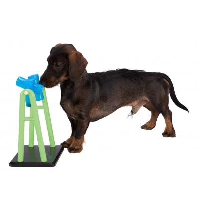 Dog activity Turnaround