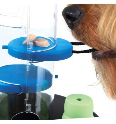Dog activity Gambling tower
