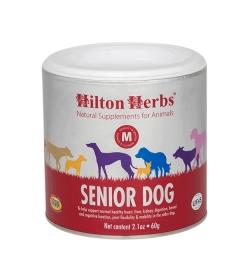 Senior Dog (chien vieillissant)