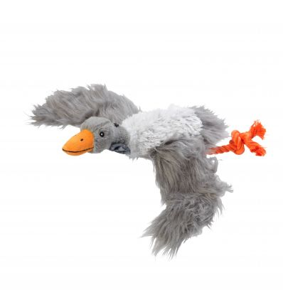 Winter Goose
