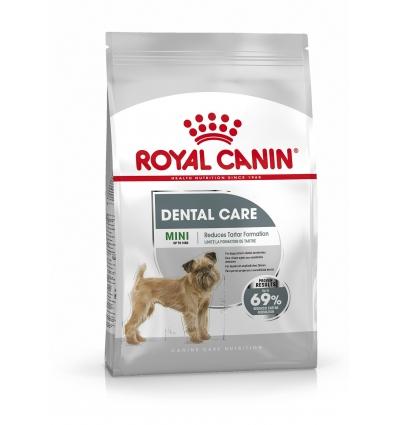 Mini Dental Care