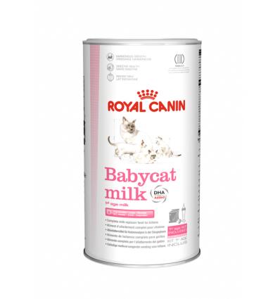 Baby Cat Milk