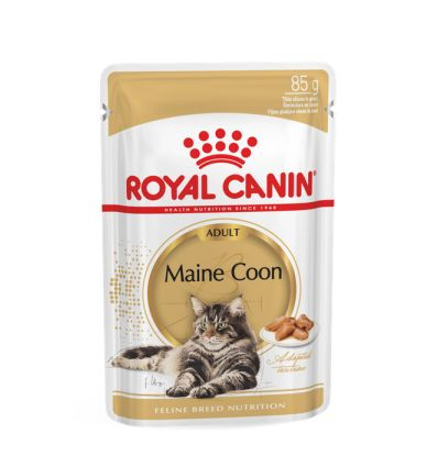 Maine Coon Adult Sauce